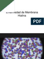 Pleurotomia Ebook Download