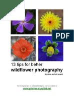 Photo Naturalist 13tips Wildflowers Photo