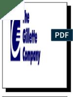 Gillette Final