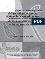 Concurso Microbiología GBS. Segundo premio 2008. Hydrolab Vasco J - Mas M - UB Salvado H