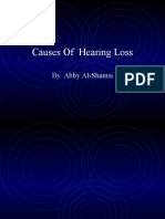 Abby-Causes of Hearing Loss