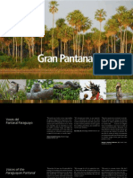 GRAN PANTANAL PARAGUAY - Emily Y. Horton - PortalGuarani