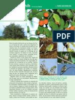 24 Plantas Que Atraen Aves (Tala)_ E_Haene