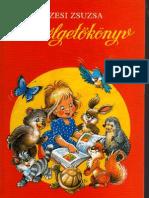 Füzesi Zsuzsa Beszélgetőkönyv