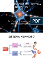 Introduccion neurofisiologia
