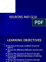 Topic 3 (Neurons and Glia July 2010)