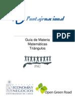 GUIA PRIMEROS TRIANGULOS