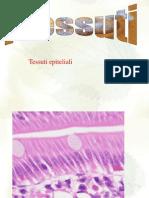 tessuti epitelialilab