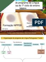 Análise do programa de Língua Portuguesa do 2011