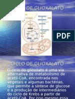 4H-Ciclo de Glioxalato