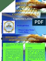 Normativad Sobre Delitos cos Constitucional - Delitos Contra Los Derechos Intelectuales