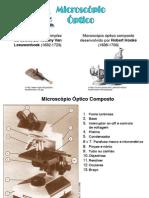 Diferenças entre os microscópios optico e electronicos