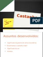 Castanho.pptx clara 6ºD