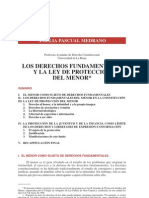 Derechos Fund Amen Tales y Protec Del Menor. Pascual