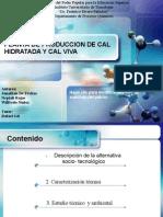Planta de Produccion de Cal Hidratada y Cal