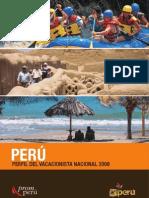 Publicacion Perfil Vacacionista Nacional 2008