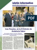 INÉS ROSALES - Boletín Informativo Nº 11