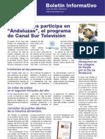 INÉS ROSALES - Boletín Informativo Nº 3