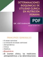 Determinaciones bioquímicas de utilidad clínica  en nutrición humana