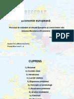 Uniunea Monetara Si Economica