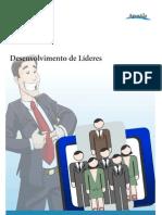 20100630_desenvolvimento_lideres