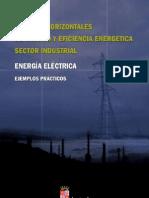 Manual de Mejoras Horizontales. Energía Eléctrica
