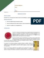 MICROBIOLOGIA, REPORTE 2