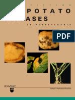Potato Disease