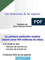 Las Extinciones de Las Especies