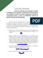 Capitulo II Morfologia Bacteriana