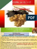 La Vid y Los Sarmientos-exposicion