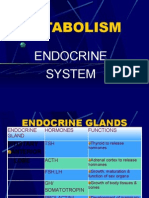Anatomy of the Endocrine System II