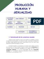 REPRODUCCIÓN HUMANA Y SEXUALIDAD