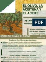 el olivo,la aceitnua y ela ceite