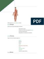 Hipoxemiade bertha