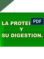 Digestión Proteica