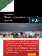 Planta_de_beneficio_de_ganado_bovino -sanea..