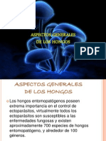 Aspectos Generales de Los Hongos (Expo Micro) Lino