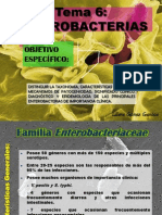 TEMA 6 Enterobacterias