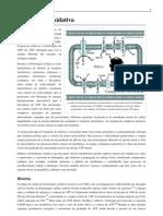 fosforolização oxidativa