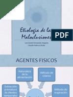 Etiologia Maloclusion