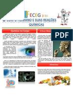 FECEG 2011 - Cópia (2) - Cópia