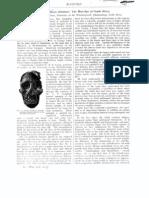 AUSTRALOPITHECUS-Articulo Original de Raymond-Dart