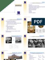 FVC T10 Geometric As 4p