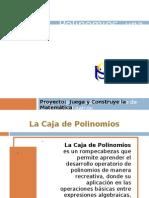 EXPERIENCIA DE AULA - CAJA DE POLINOMIOS 1