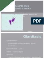 Giardiasis y toxoplasmosis