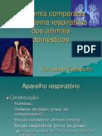 Anatomia Comparada Do Sistema Respirat%F3rio Dos Animais Dom%E9sticos