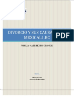 Divorcio Causales de Divorcio en Mexicali