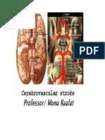 Cerebrovascular Stroke