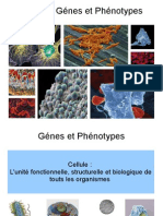 biologiepourTmplab